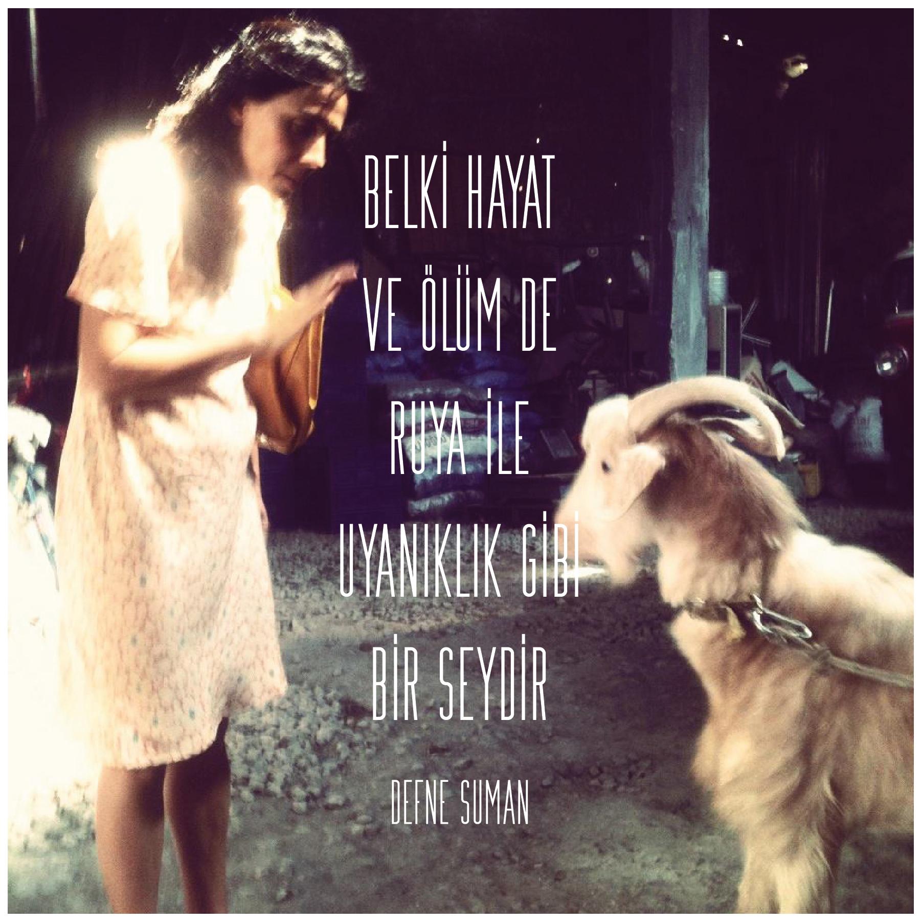 Keçinin Rüyası